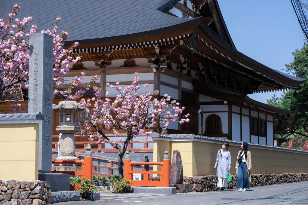 栃木市満福寺しもつかれ散歩